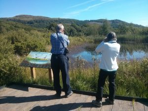 Cors Dyfi pond species panel