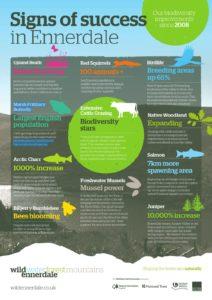 Wild Ennerdale infographic